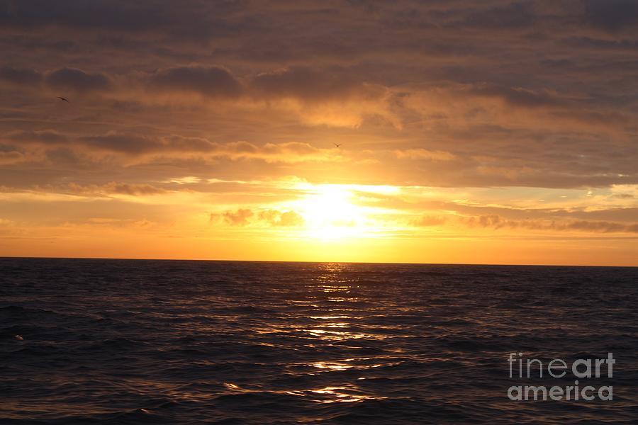 Telfer Photograph - Fishing Into The Sunrise by John Telfer