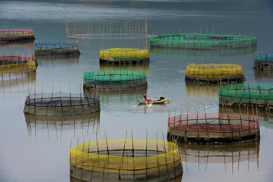 Color Photograph - Fishing Life by Bongok Namkoong