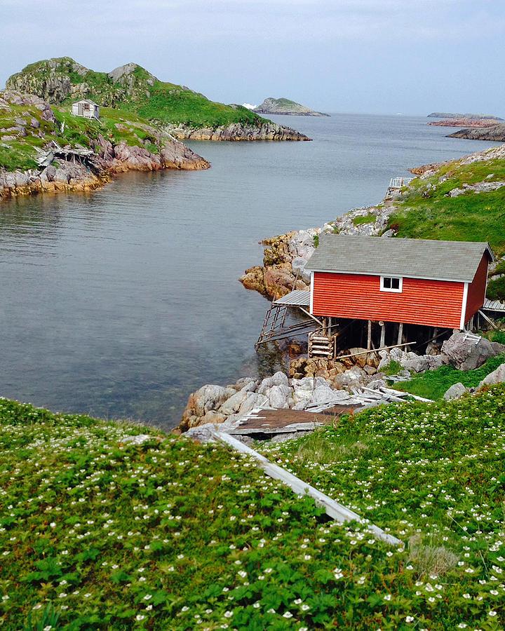 Fishing Stage Little Fogo Island Newfoundland by Lisa Phillips
