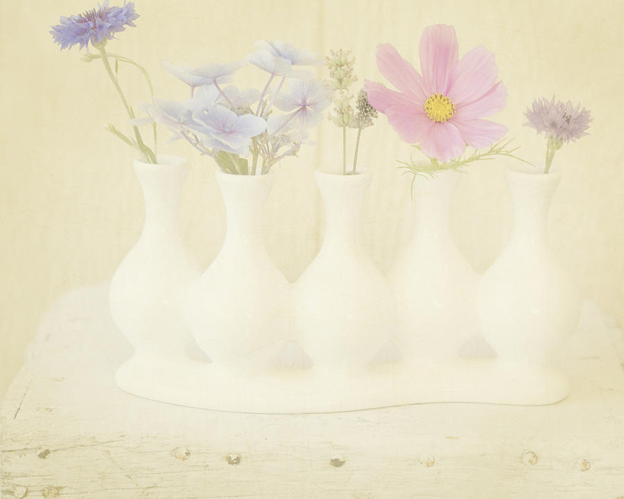 Minimalistic Photograph - Five Little Bouquets by Bonnie Bruno