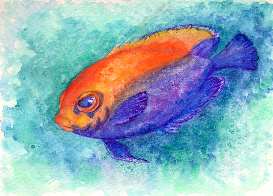Tropical Fish Painting - Flameback Angelfish by Ashley Kujan