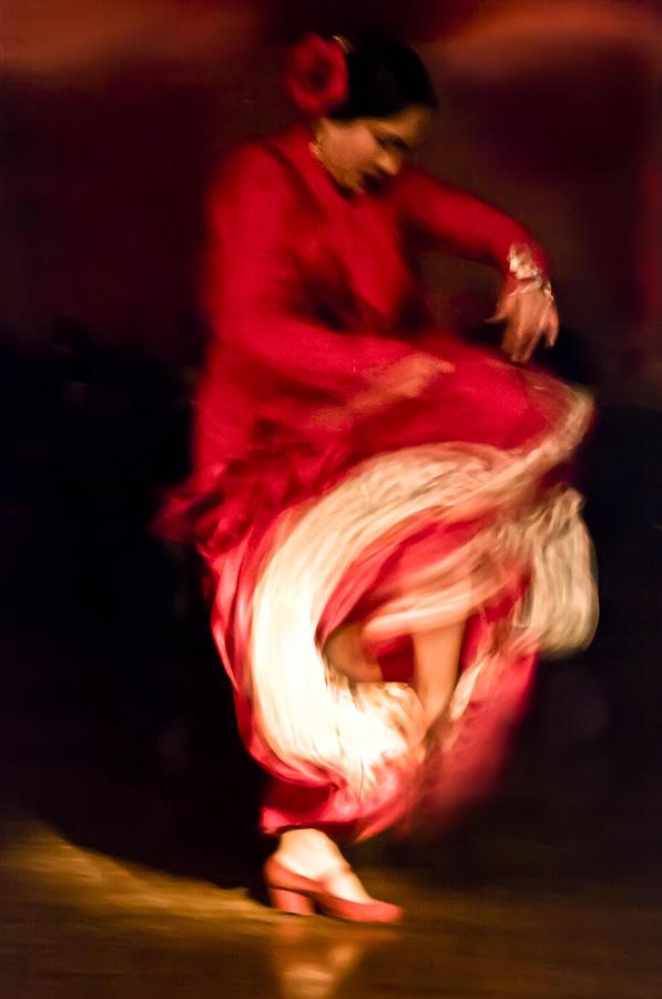 Flamenco Series 1 by Catherine Sobredo