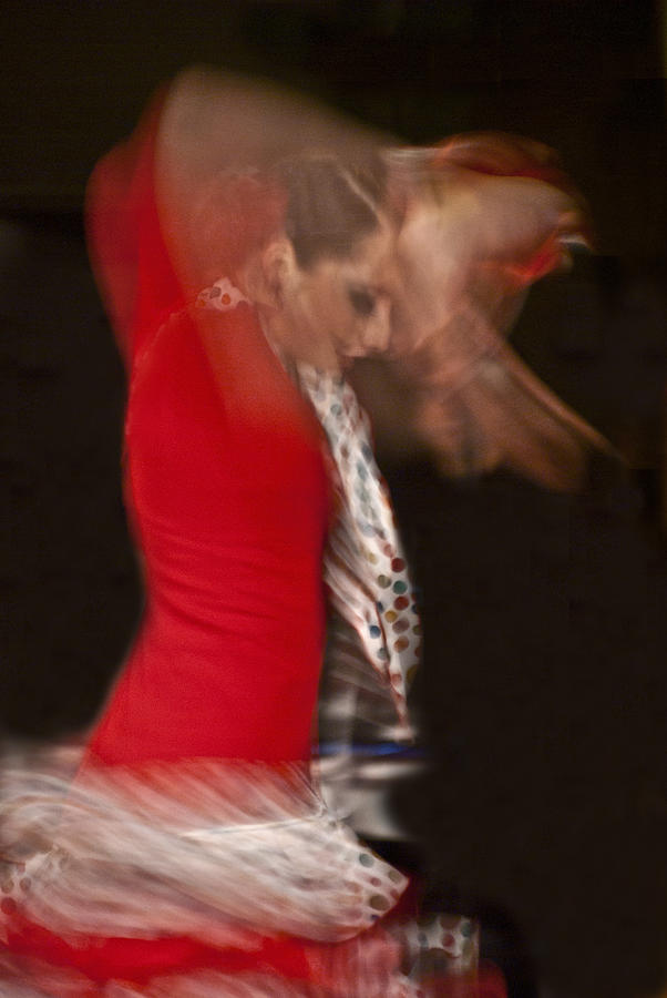Flamenco Series 3 by Catherine Sobredo