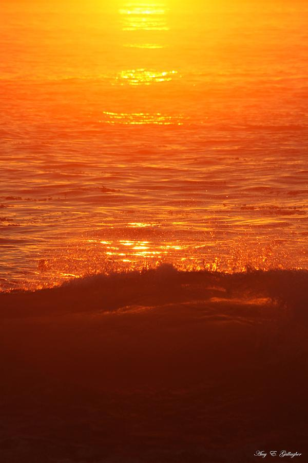 Flames With No Horizon Photograph