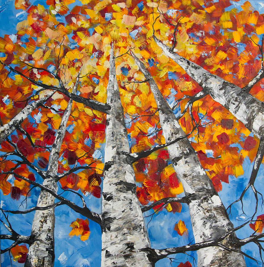 Flaming Aspens by Melinda Cummings