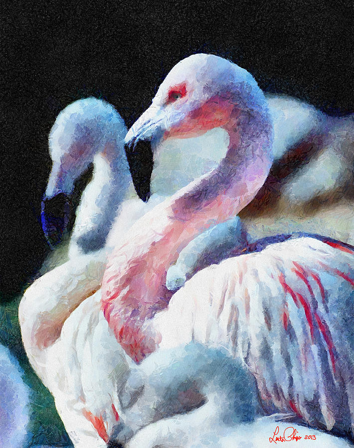 Bird Painting - Flamingo by Lester Phipps