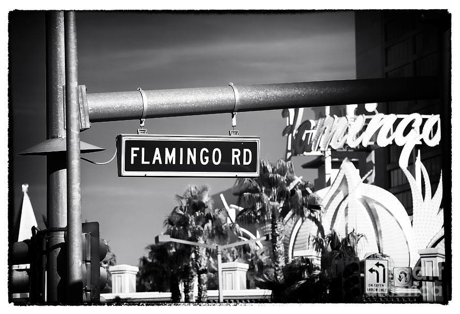 Flamingo Road Photograph - Flamingo Road by John Rizzuto