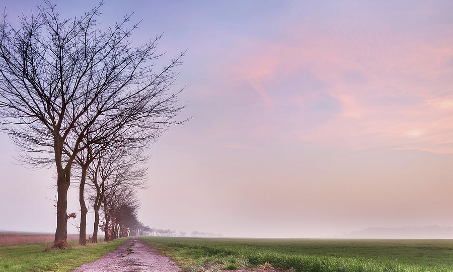 Flat Landscape Sunset Photograph by Simonmasters