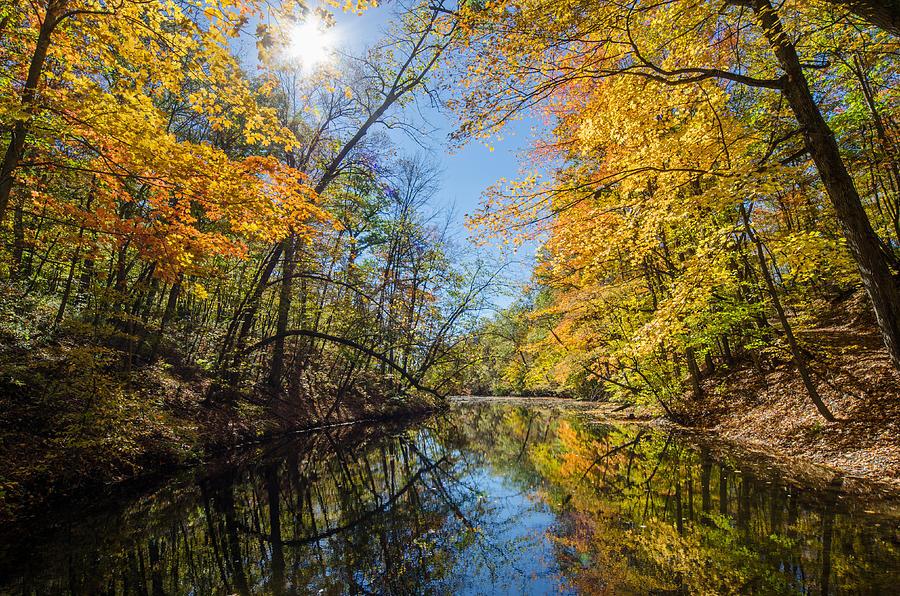 Fall Photograph - Fleeting Fall  by Susan McMenamin