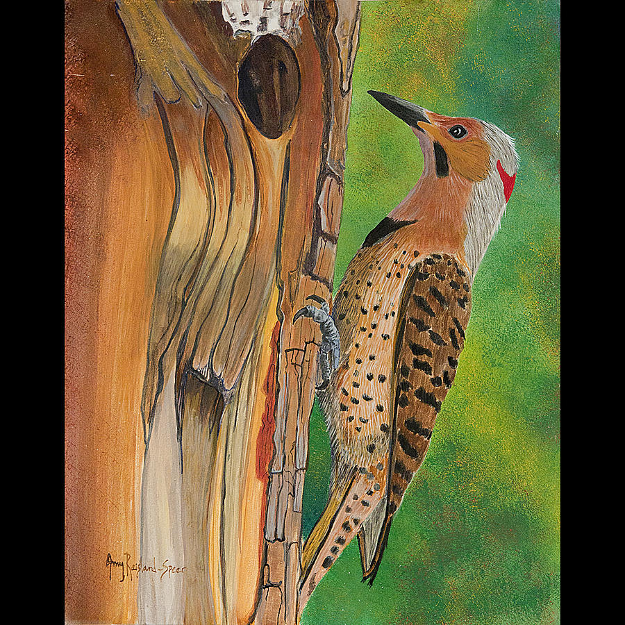 Flicker Painting - Flicker by Amy Reisland-Speer