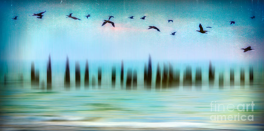 Outer Banks Photograph - Flight - A Tranquil Moments Landscape by Dan Carmichael