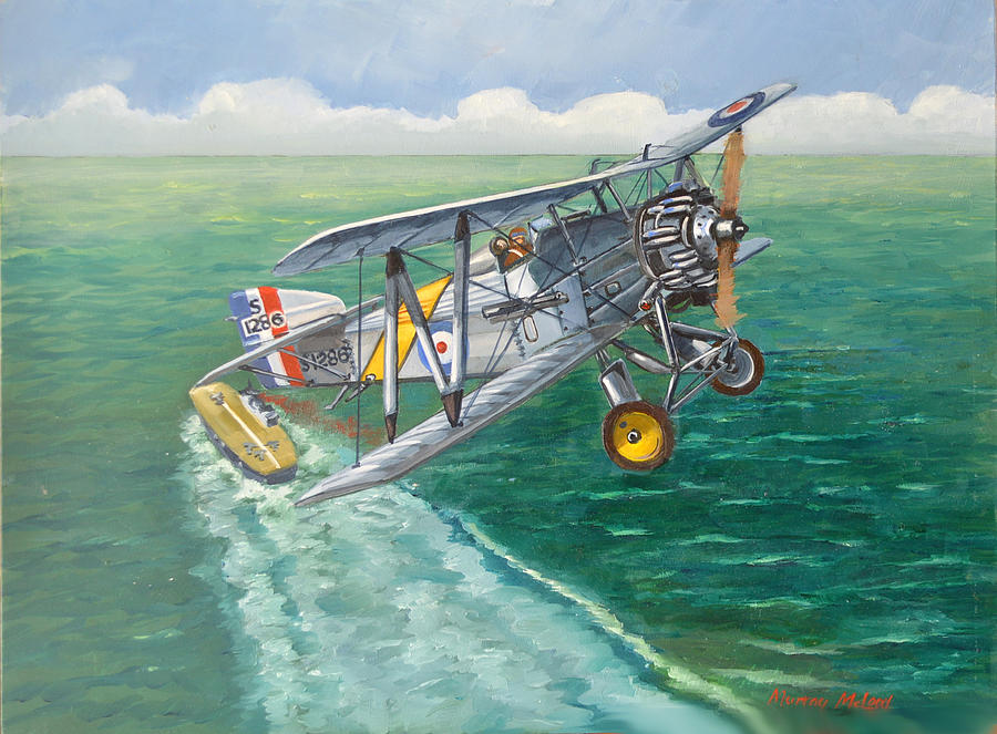 Flycatcher Painting - Flight Of The Flycatcher 2 by Murray McLeod