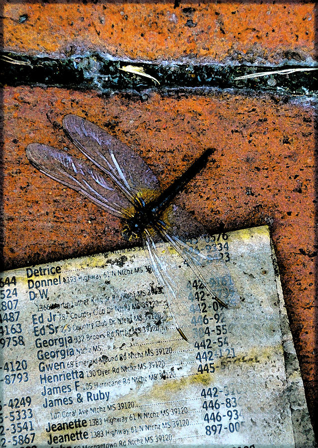 Dragonfly Photograph - Flightpage by Leon Hollins III