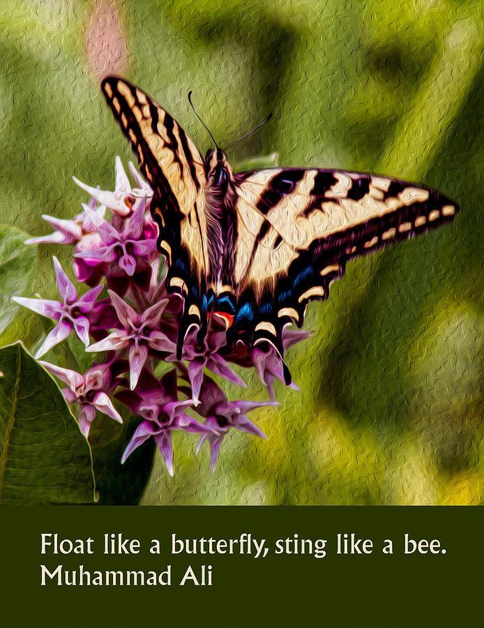 Float Like a Butterfly by Omaste Witkowski