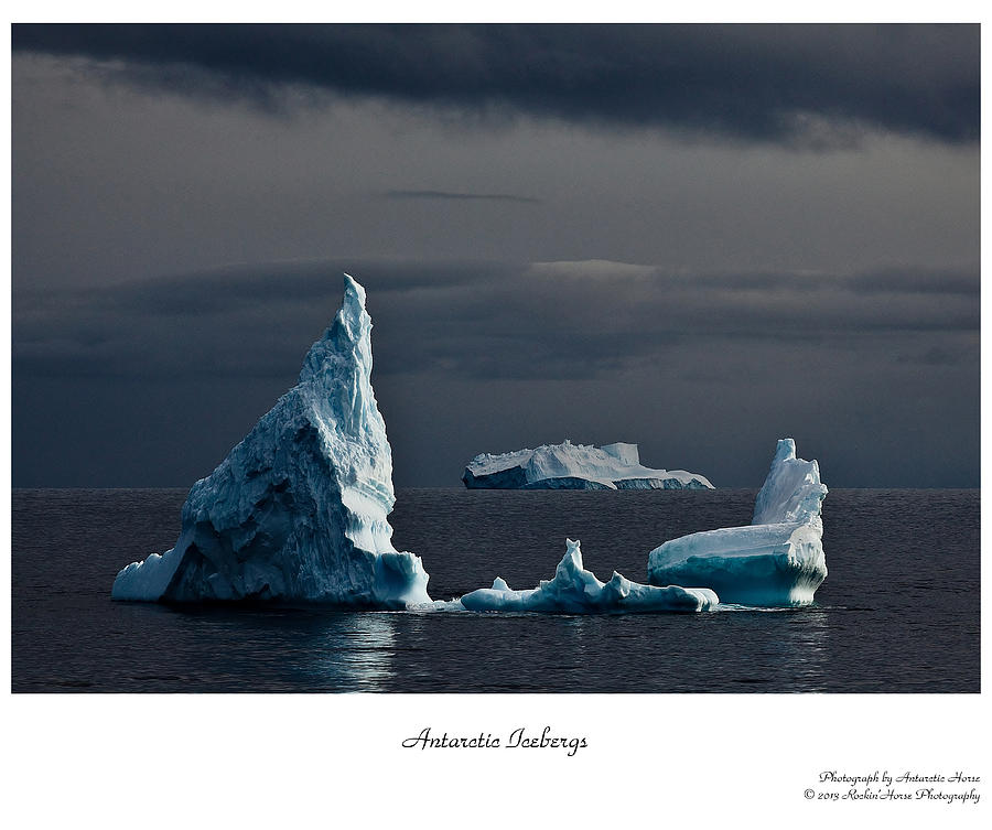 Antarctica Photograph - Floating Giants by David Barringhaus