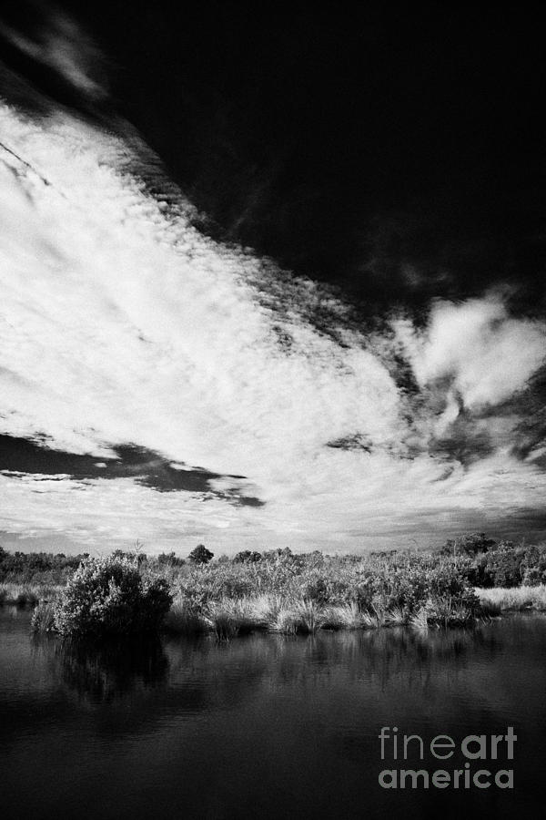Florida Photograph - Flooded Grasslands And Mangrove Forest In The Florida Everglade by Joe Fox