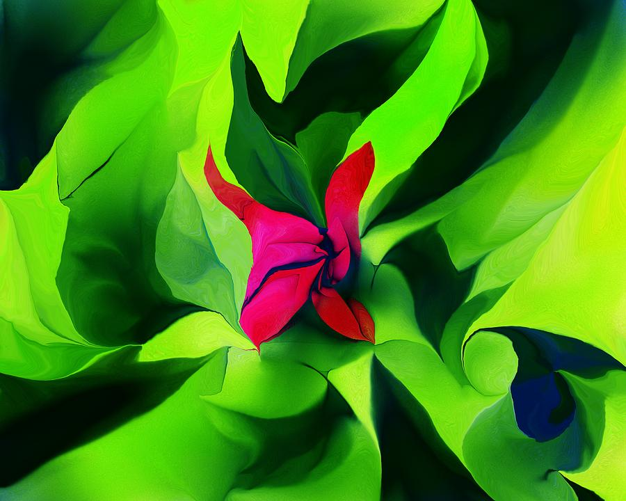 Floral Abstract Play Digital Art