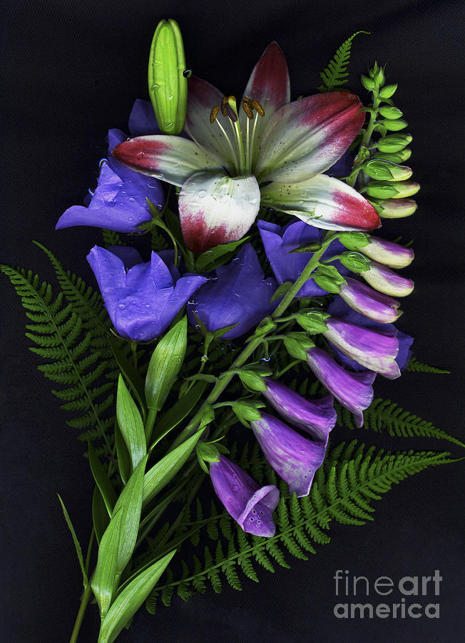 Flowers Photograph - Floral Bouquet 2 by Sharon Talson