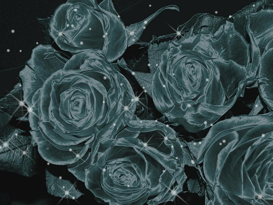 Art166 Digital Art - Floral Constellations by Wendy J St Christopher