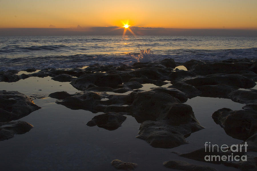 Sunrise Photograph - Florida Morning Starlight by Darleen Stry