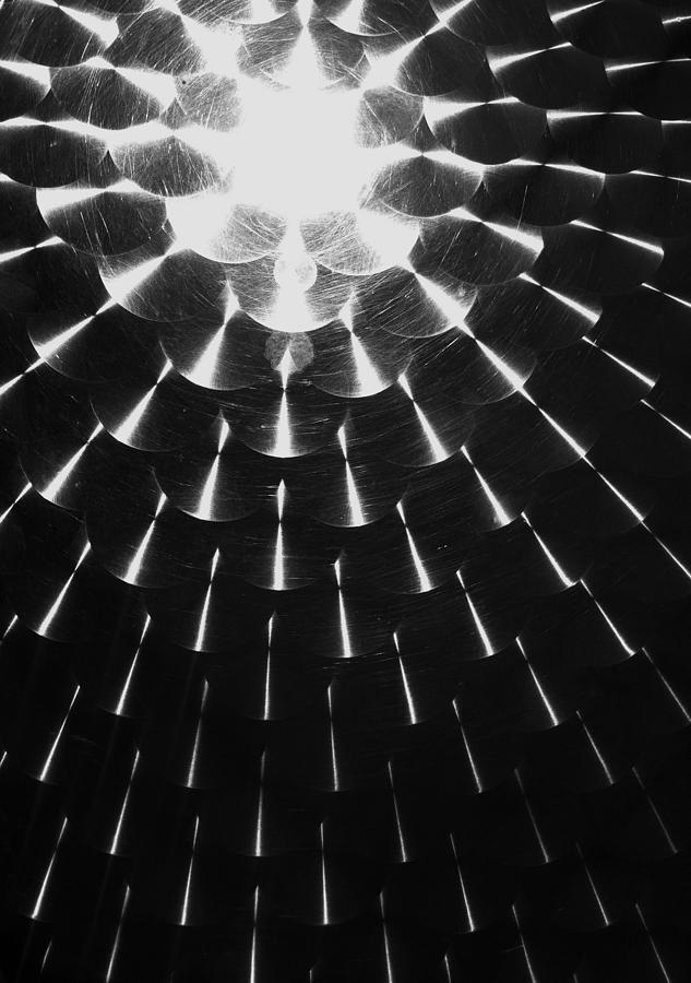 Reflection Photograph - Florida Sun by Anna Villarreal Garbis