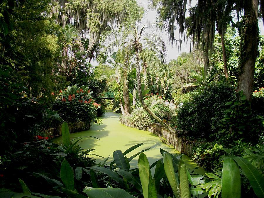 Landscape Photograph - Floridas Best Nature by Bruce Kessler