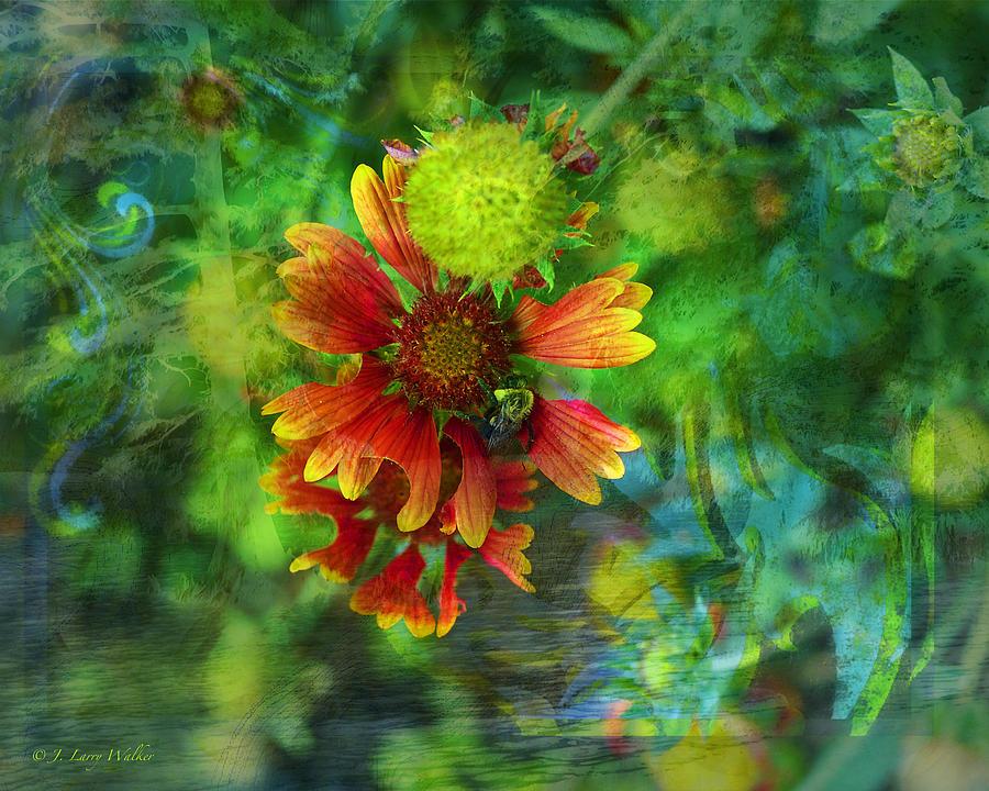 Walker Digital Art - Flower Abstract by J Larry Walker
