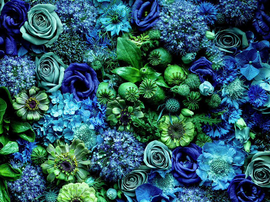 Flower Arrangment, Full Frame Photograph by Jonathan Knowles