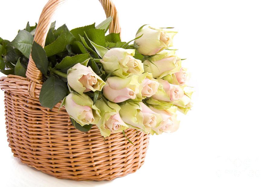 Flower Baskets Photograph - Flower Baskets by Boon Mee
