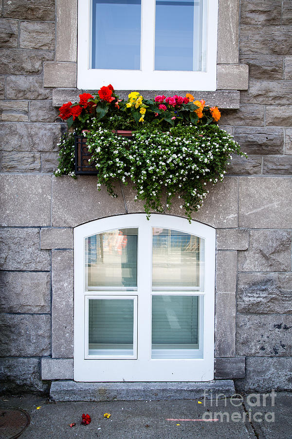 Flower Photograph - Flower Box Old Quebec City by Edward Fielding