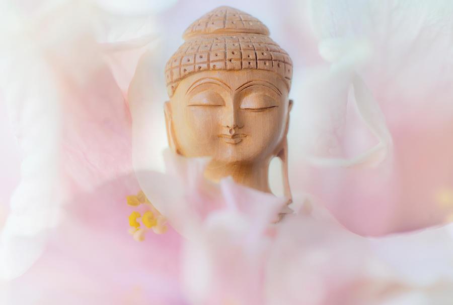 Buddha Photograph - Flower Buddha 3 by Jenny Rainbow