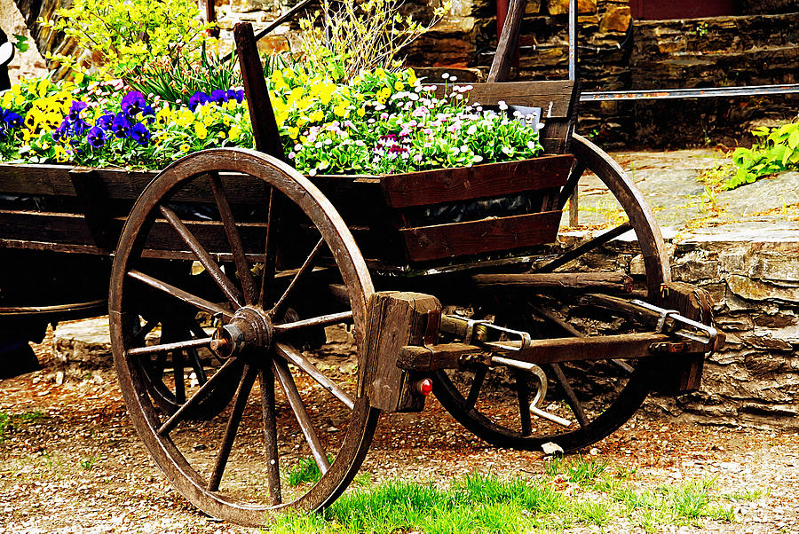 Ancient Photograph - Flower Cart by Design Windmill