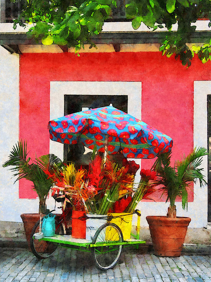 Flower Photograph - Flower Cart San Juan Puerto Rico by Susan Savad