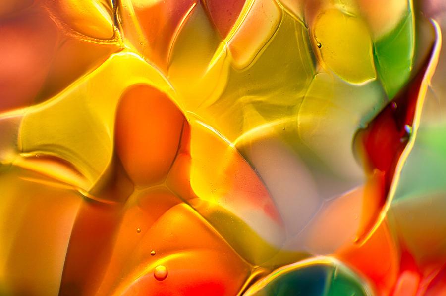 Glass Photograph - Flower Child by Omaste Witkowski