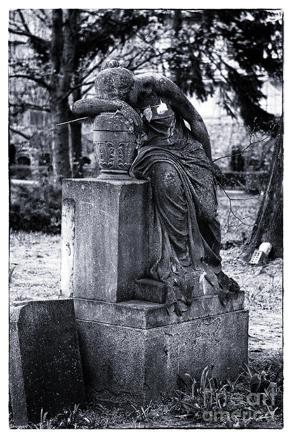 Cemetery Photograph - Flower For The Dead by John Rizzuto