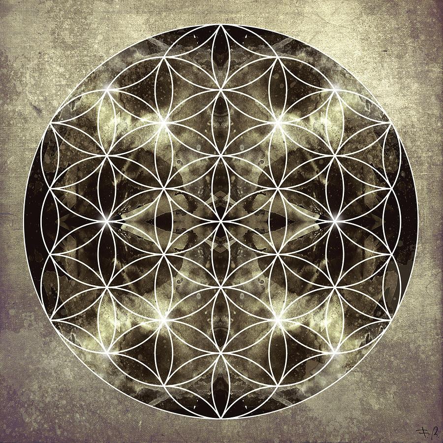 Mandala Digital Art - Flower Of Life Silver by Filippo B