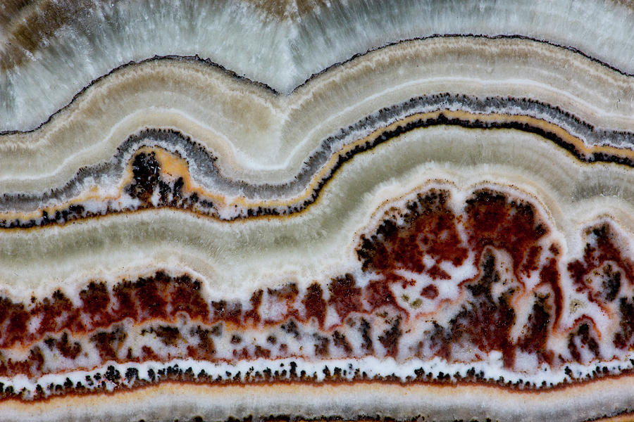 Flower Onyx, Close-up Of Pattern Photograph by Darrell Gulin