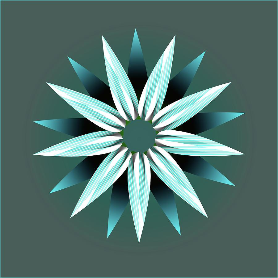 Flower Petals Creative Abstract Design Digital Art by Raj Kamal