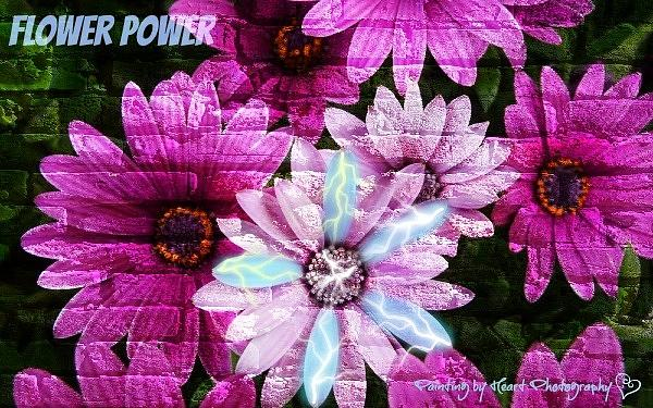 Flower Power by Deahn      Benware