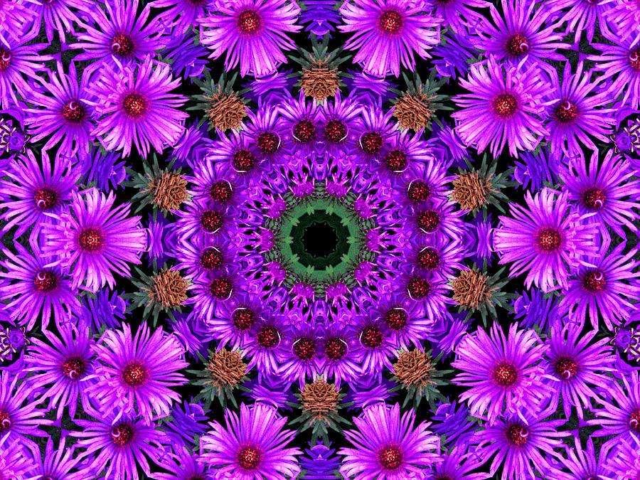 Kaleidoscope Photograph - Flower Power by Kristie  Bonnewell