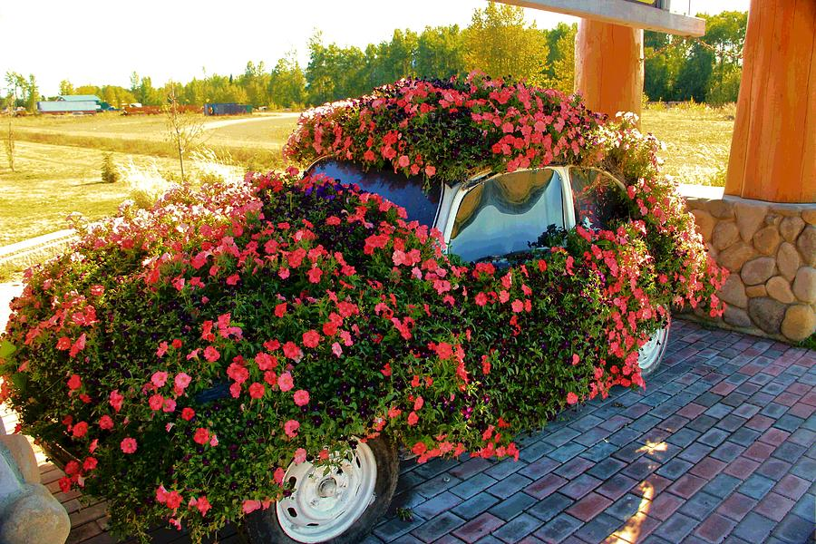Vw Photograph - Flower Power by Marv Russell
