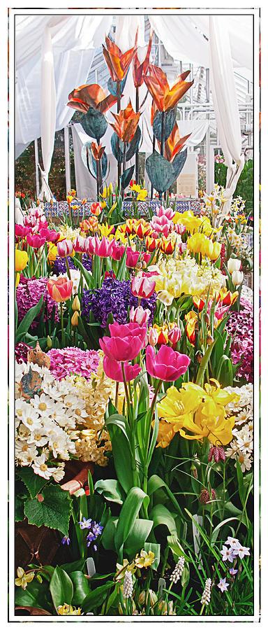 Flower Show by Sandy Scharmer