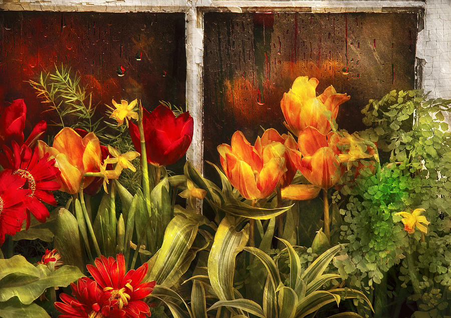 Savad Photograph - Flower - Tulip - Tulips In A Window by Mike Savad