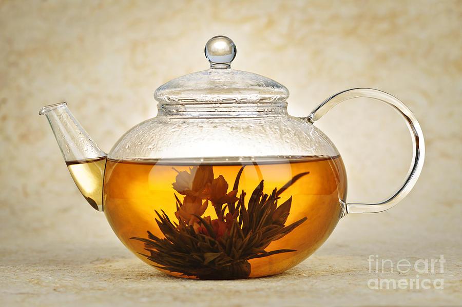 Blooming Photograph - Flowering Blooming Tea by Elena Elisseeva
