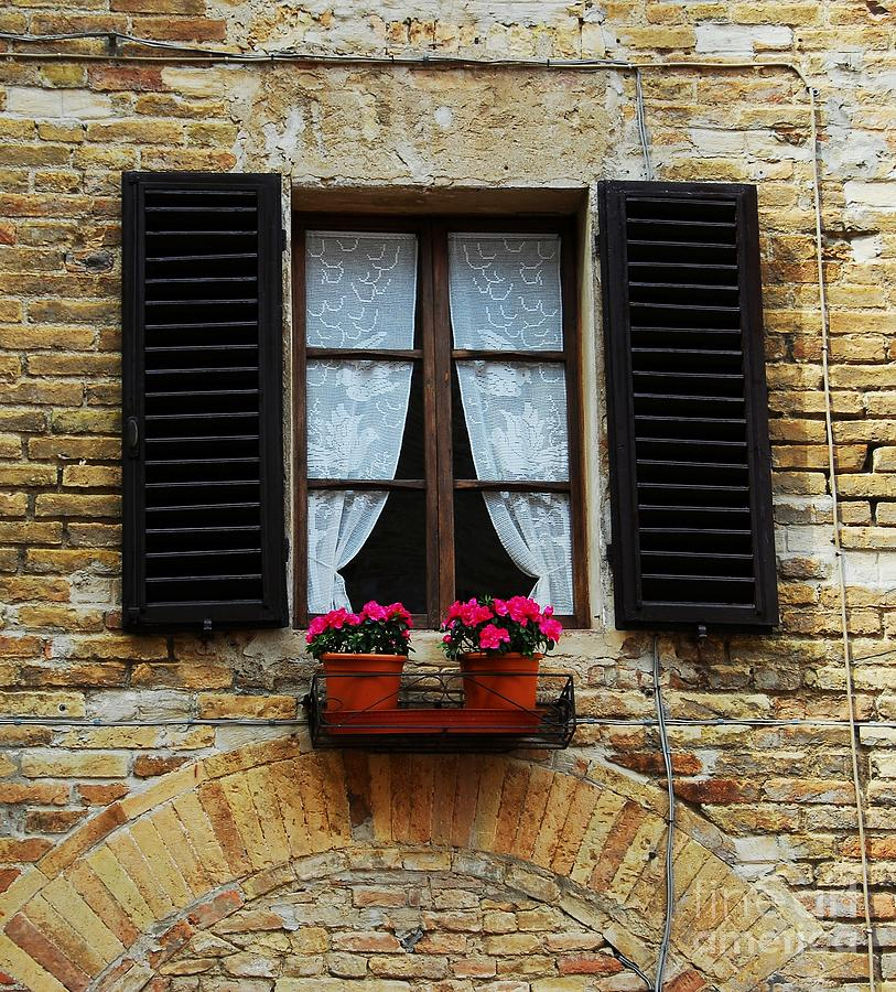 Cityscapes Photograph - Flowers And Lace by Mel Steinhauer