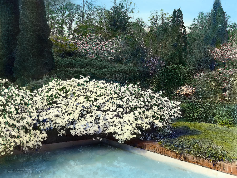 Tranquil Photograph - Flowers And Pool by Terry Reynoldson