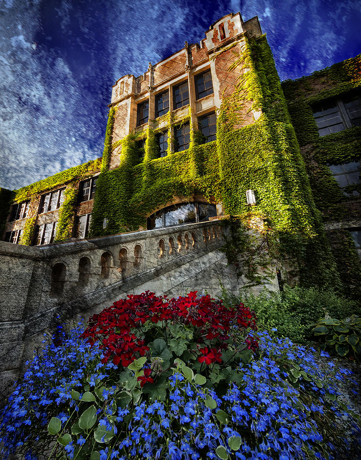 Flowers at Somsen Hall by Al  Mueller
