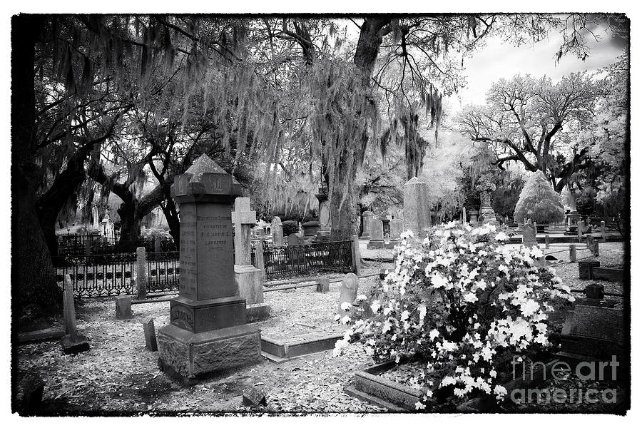 Flowers By The Grave Photograph - Flowers By The Grave by John Rizzuto