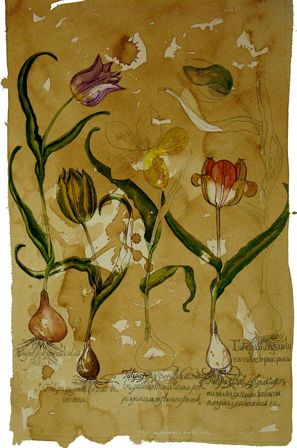 Flowers Painting - Flowers In Herbarium by Arual Jay
