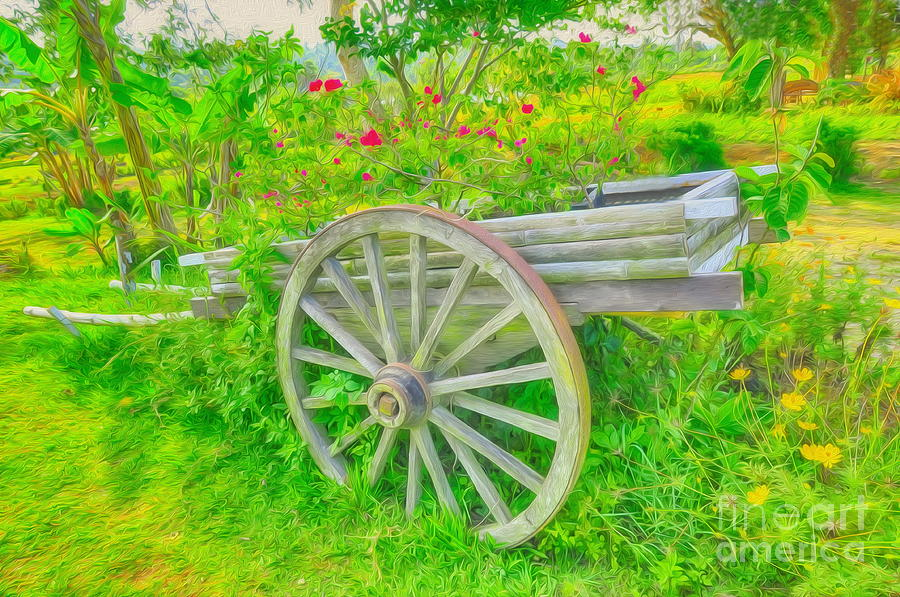 Flowers Photograph - Flowers In A Wagon by George Paris